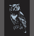 owl design on black background vector image