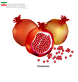 Ripe Pomegranate A Popular Fruit in Iran vector image vector image