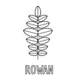 rowan leaf icon outline style vector image vector image