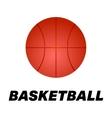 Realistic basketball icon Logo vector image