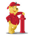 Firefighter Bear icon vector image