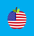 apple usa flag america national fruit vector image vector image