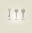 evolution of keys vector image