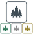 fir trees icon vector image