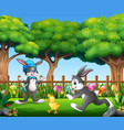 happy bunnies playing with baby chick in the park vector image vector image