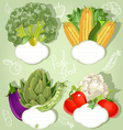 Vegetarian menu banners with the field for your vector image vector image