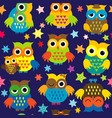 cartoon owls in nighttime colorful seamless vector image vector image