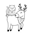 cute animals woodland characters vector image