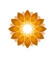 elegant golden flower shades symbol design graphic vector image vector image