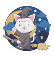 flying wizard white cat uses a broom in the vector image