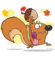 Happy squirrel cartoon vector image
