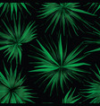 palm monstera exotic seamless pattern vector image vector image