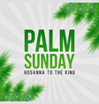 palm sunday holiday card poster with palm leaves vector image
