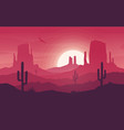 colorful desert landscape at hot sunset vector image