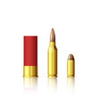 different types cartridges realistic bullet vector image vector image