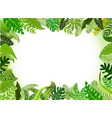 landscape background jungle with ornaments vector image