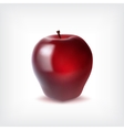 Ripr red apple vector image vector image