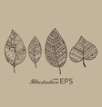 Set of four brown line graphic leaves pr vector image vector image
