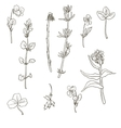 Set of plants silhouettes vector image