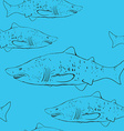 Sharks in the water Black outline on the blue vector image vector image
