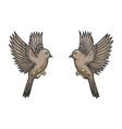 sparrow birds tattoo color sketch engraving vector image vector image