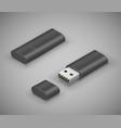 usb stick flash drive vector image vector image