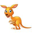 cartoon mother kangaroo and her baby vector image