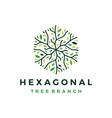 hexagonal tree branch logo icon vector image vector image