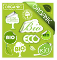 organic elements vector image vector image