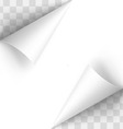 Paper curl vector image vector image