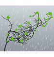 rain2 vector image vector image