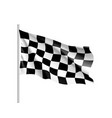 flag auto racing waving realistic banner vector image
