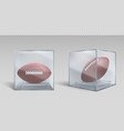 rugball in transparent box case vector image vector image
