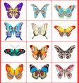 set of summer butterflies vector image vector image