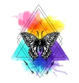 sketch of butterfly vector image vector image
