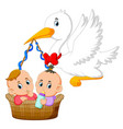 stork is holding basket with two ba vector image vector image