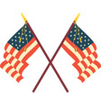 two american flags vector image