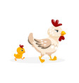 adorable fowl family isolated on white background vector image vector image