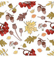 autumn rowan nature seamless pattern illust vector image