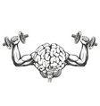 brain with strong hands brain training icon vector image vector image