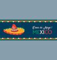 happy cinco de mayo mexican mariachi hat banner vector image vector image