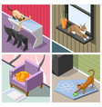 purebred cats isometric design concept vector image vector image