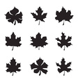 Set of nine Maple-leaf silhouette vector image