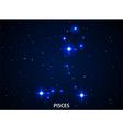 Set of Symbol Zodiac Pisces vector image