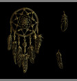 golden luxary ornate dreamcatcher with feathers vector image vector image