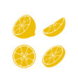 lemon icon design template isolated vector image vector image