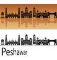 peshawar skyline vector image