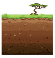 Single tree on surface and underground scene vector image vector image