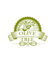 olive tree branch with fruit and leaf label design vector image