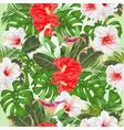 seamless texture floral arrangement tropical vector image vector image